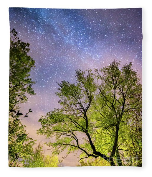 Trees And Stars At Night Fleece Blanket