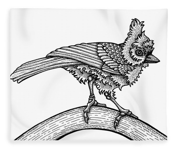 Fleece Blanket featuring the drawing Tufted Titmouse by Amy E Fraser