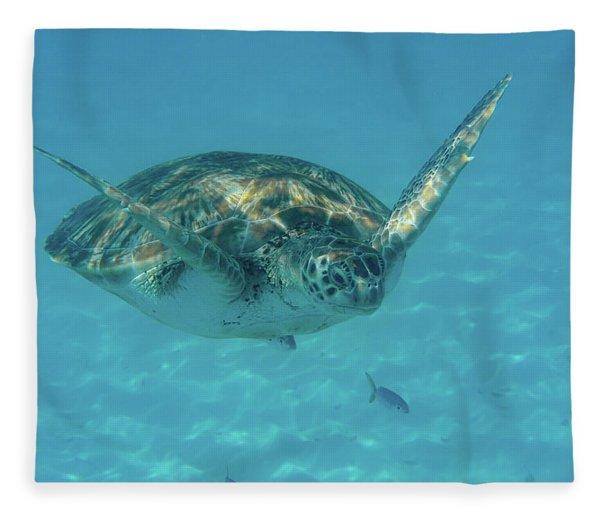 Turtle Approaching Fleece Blanket