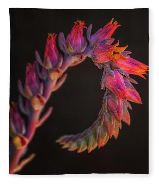 Vibrant Arc Fleece Blanket