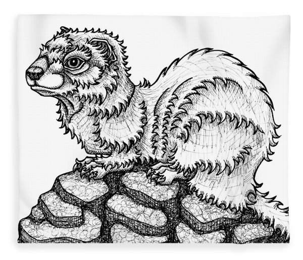 Fleece Blanket featuring the drawing Weasel by Amy E Fraser