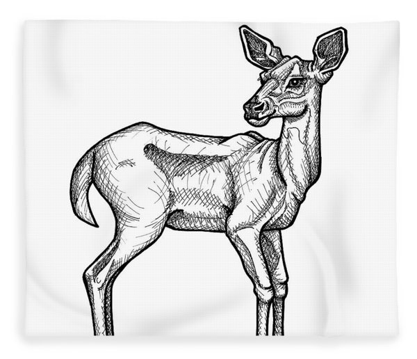 Fleece Blanket featuring the drawing White Tailed Doe by Amy E Fraser