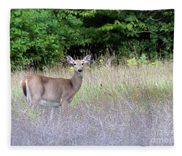 White Tale Deer Fleece Blanket
