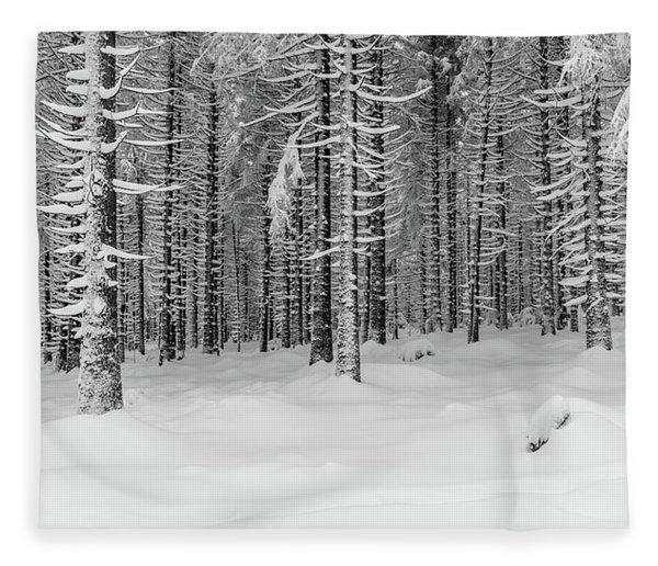 winter forest, Harz Fleece Blanket