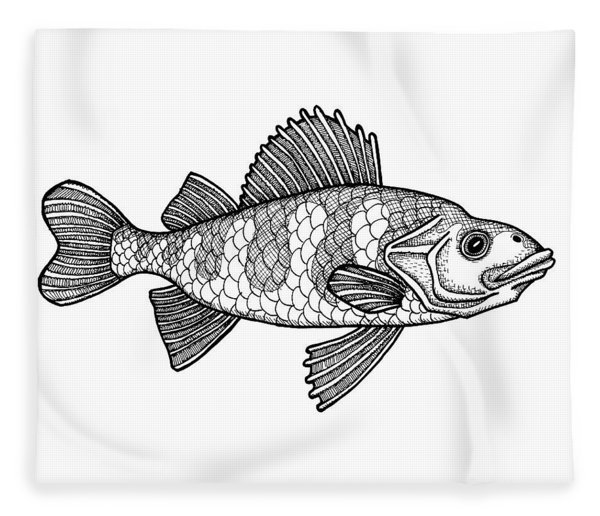 Fleece Blanket featuring the drawing Yellow Perch by Amy E Fraser