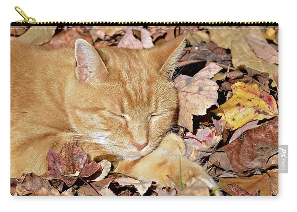 Autumn Dreaming Carry-all Pouch