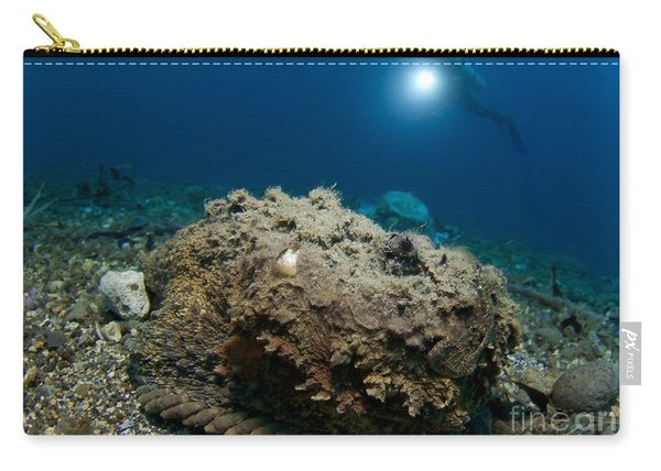 A Diver Looks On At A Giant Stonefish Carry-all Pouch