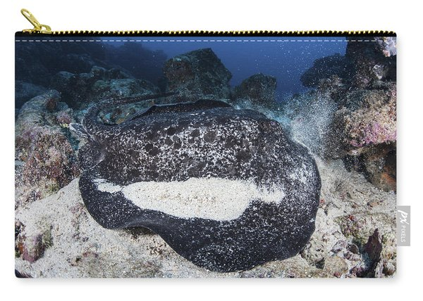 A Large Black-blotched Stingray Carry-all Pouch
