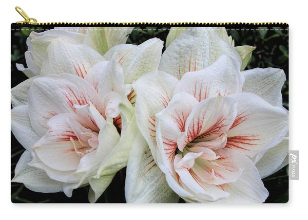 Amaryllis Cluster Carry-all Pouch