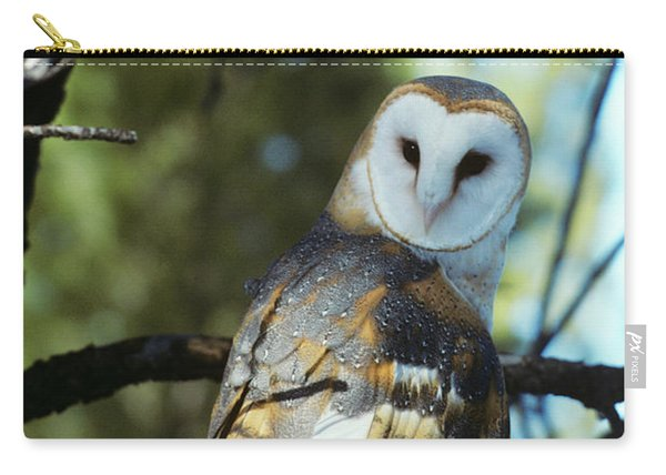 Barn Owl Tyto Alba Worldwide Range High Carry-all Pouch