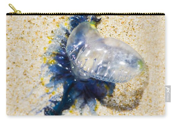 Beached Bluebottle Carry-all Pouch