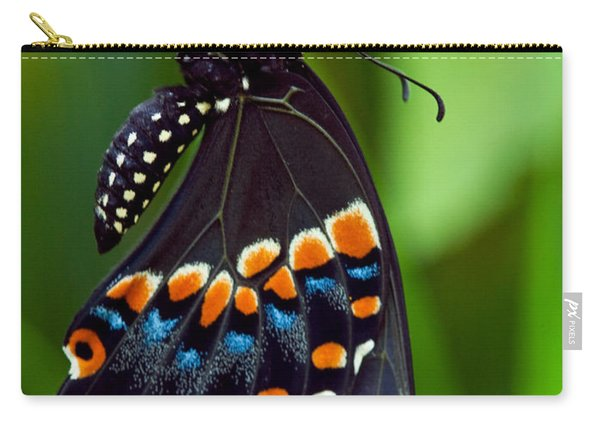 Black Swollowtail  Carry-all Pouch