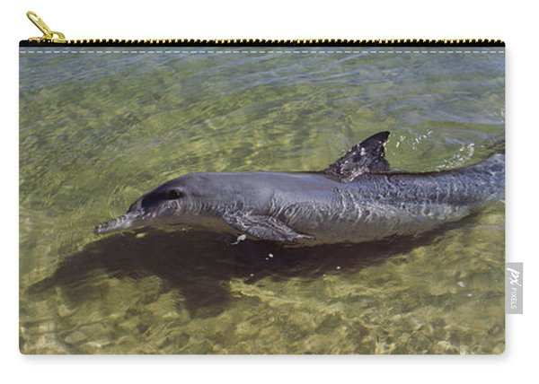 Bottle-nosed Dolphin Tursiops Truncatus Carry-all Pouch