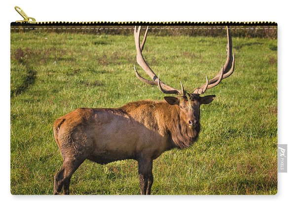 Bull Elk Carry-all Pouch