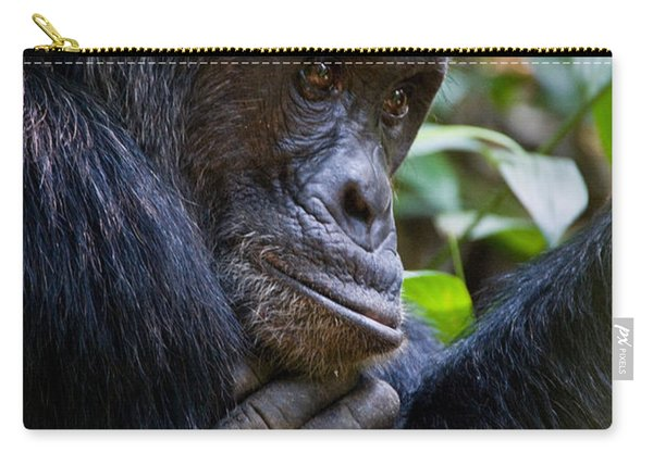 Close-up Of A Chimpanzee Pan Carry-all Pouch