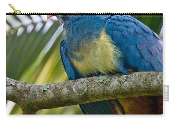 Close-up Of A Great Blue Turaco Carry-all Pouch