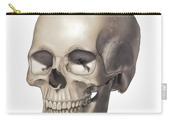 Color Illustration Of A Human Skull Carry-all Pouch