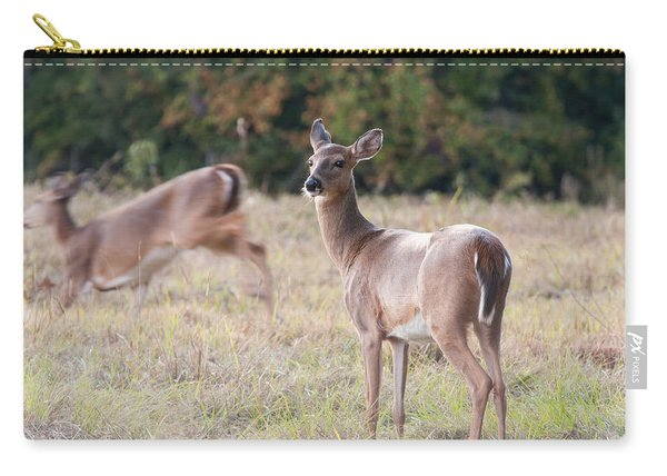 Deer At Paynes Prairie Carry-all Pouch