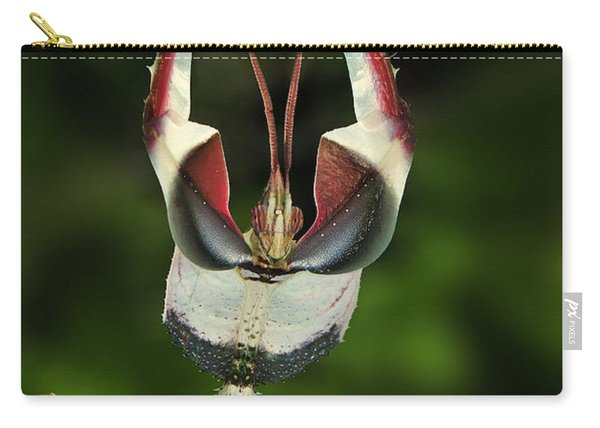 Devils Praying Mantis In Defensive Carry-all Pouch