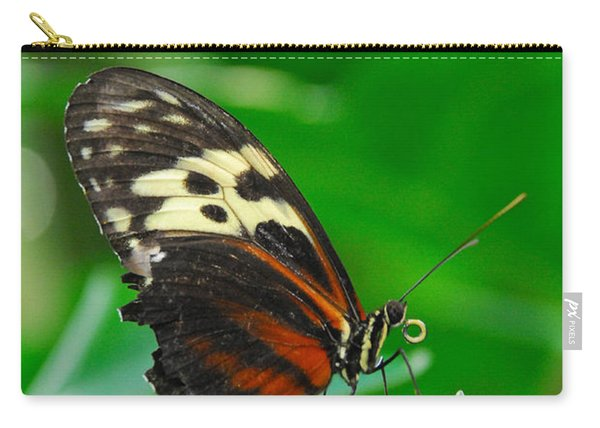 D5l15 Butterfly At Franklin Park Conservatory Carry-all Pouch