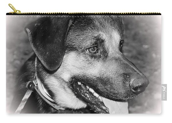 Handsome Boy Carry-all Pouch