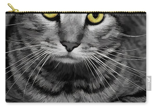 Handsome Carry-all Pouch