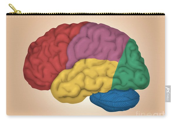 Human Brain, Lateral View Carry-all Pouch