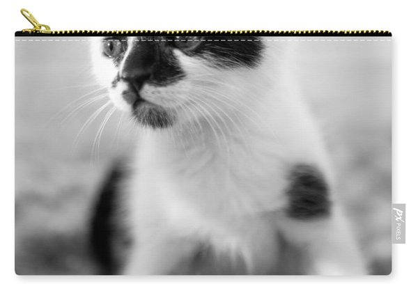 Kitten Dreaming Carry-all Pouch