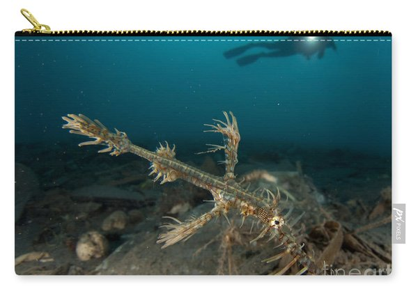 Ornate Ghost Pipefish Amongst Debris Carry-all Pouch