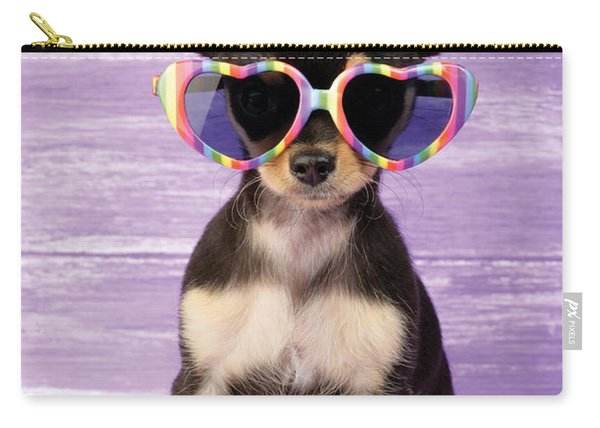 Rainbow Sunglasses Carry-all Pouch
