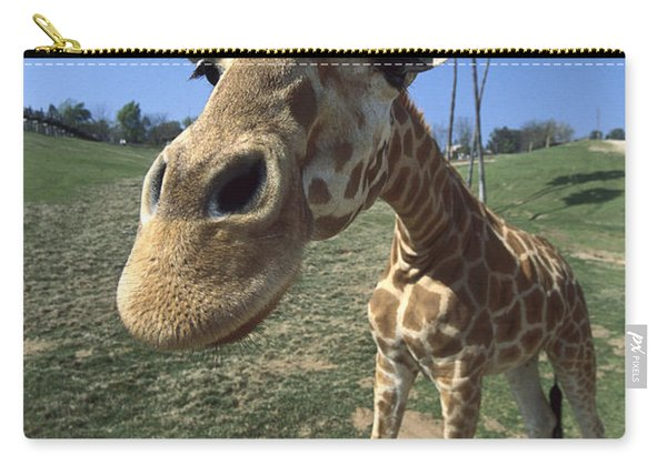 Rothschild Giraffe Portrait Carry-all Pouch
