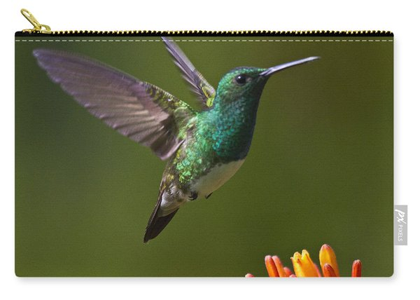 Snowy-bellied Hummingbird Carry-all Pouch