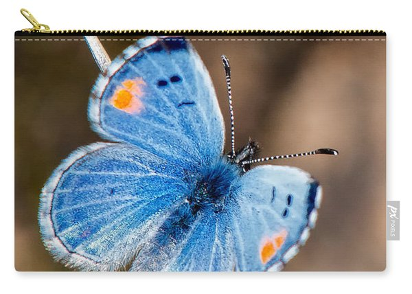 Carry-all Pouch featuring the photograph Sonoran Blue by Jim Thompson
