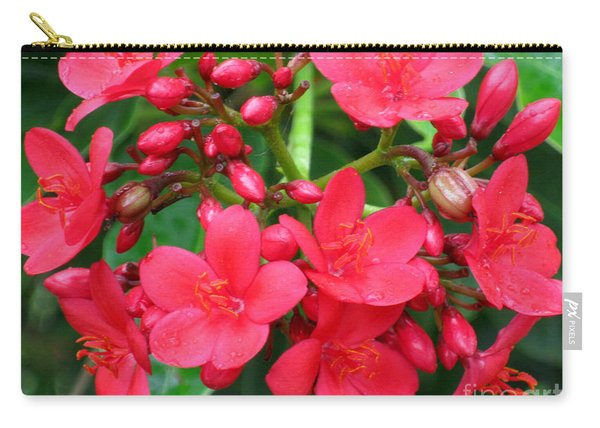 Lovely Spring Flowers Carry-all Pouch