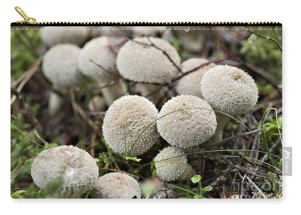 Starfish Fungus Carry-all Pouch