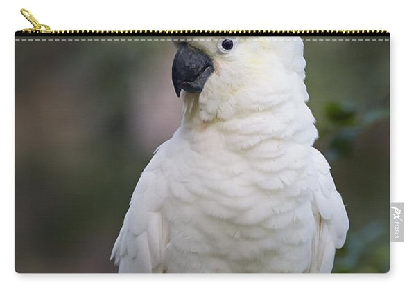 Sulphur-crested Cockatoo Displaying Carry-all Pouch