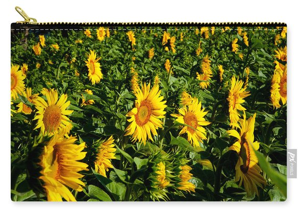 Sunflowers Helianthus Annuus Carry-all Pouch