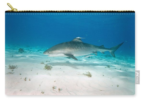 Tiger Shark Carry-all Pouch