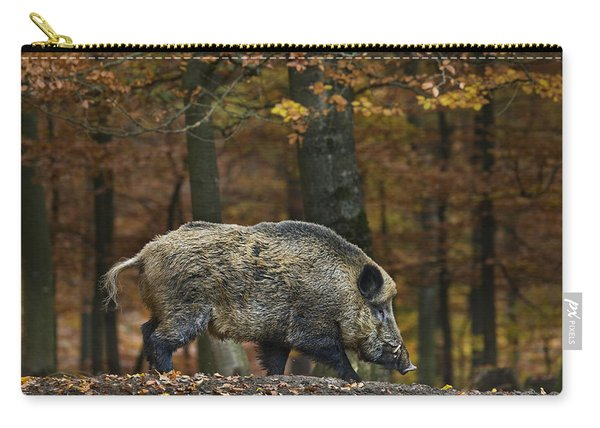 121213p284 Carry-all Pouch