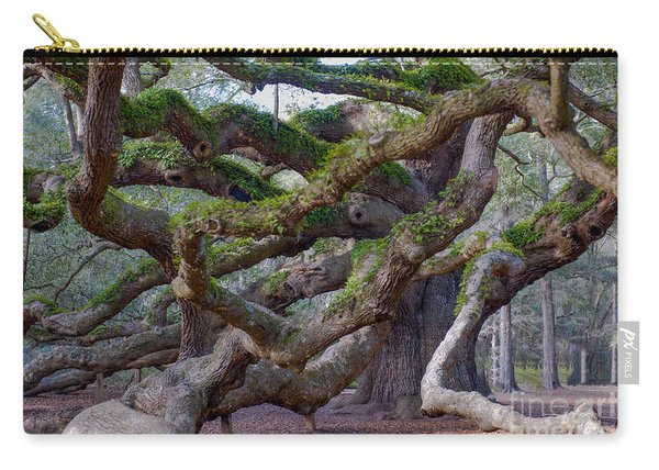 Angel Oak Tree Unique View Carry-all Pouch