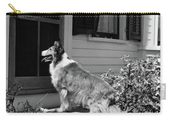1930s Rough Scotch Collie Dog Standing Carry-all Pouch