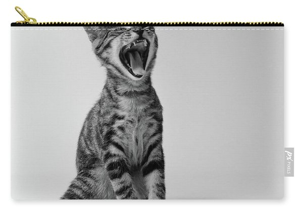 1960s Kitten Sitting & Yawning Carry-all Pouch