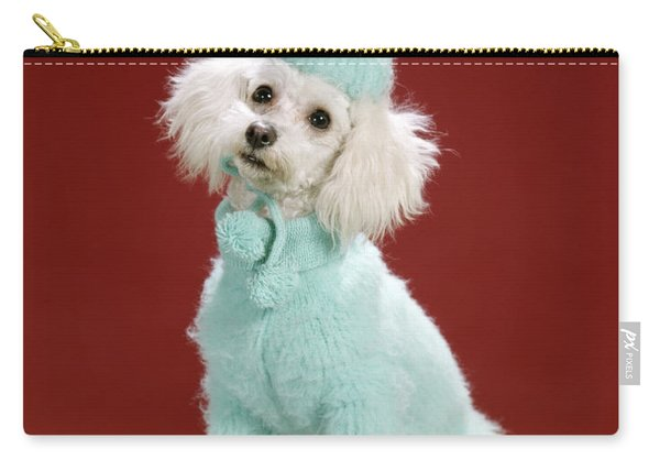 1970s White Poodle Wearing Blue Sweater Carry-all Pouch