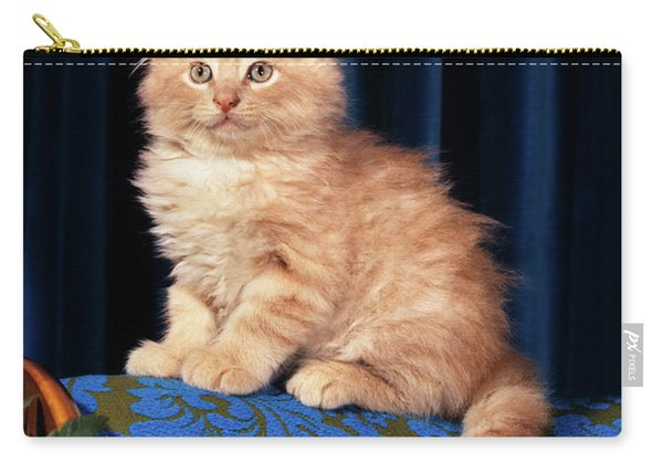 1980s Kitten Sitting On Back Of Chair Carry-all Pouch