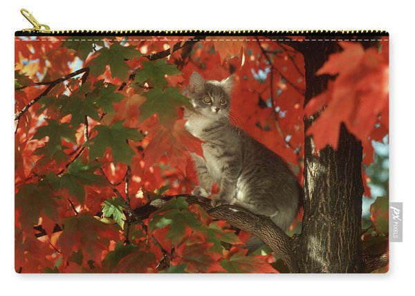 1990s Gray Tabby Cat In Autumn Tree Carry-all Pouch