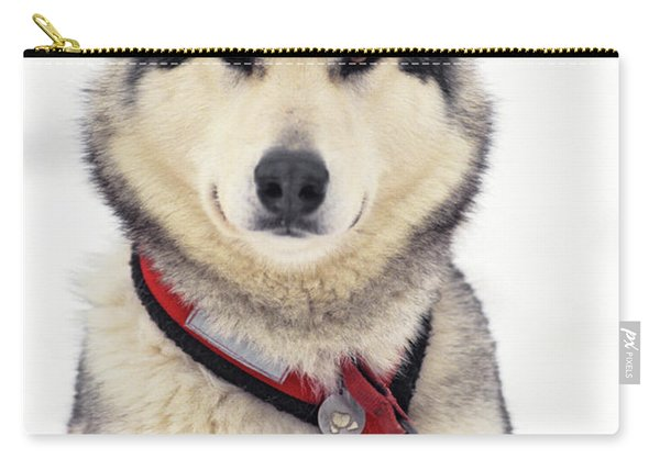 1990s Malamute Canis Lupus Familiaris Carry-all Pouch
