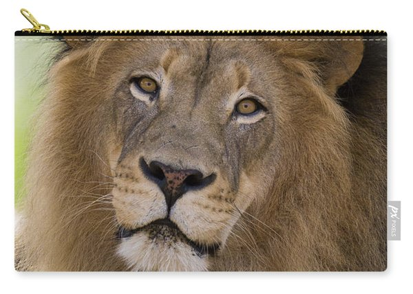 African Lion Male Carry-all Pouch