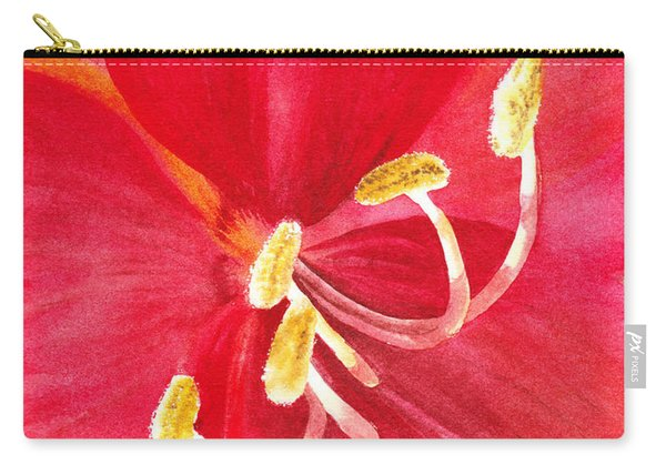 Amaryllis Flower Carry-all Pouch