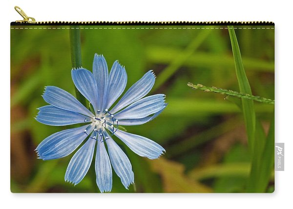 Blue Chicory Flower  Carry-all Pouch