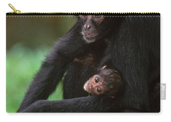 Brown-headed Spider Monkey Carry-all Pouch